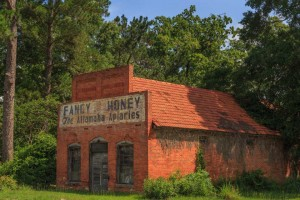 Fancy Honey, Gardi, Wayne County, Ga.